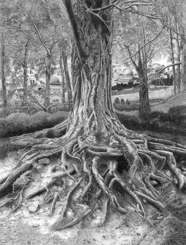 Roots of Faith by Shehab Kawasmi